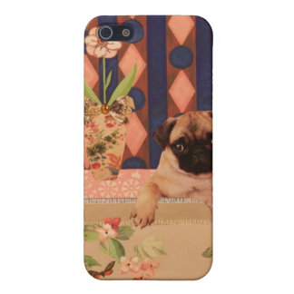 How Much is that Doggie in the Window?: Pug Pup iPhone 5 Case