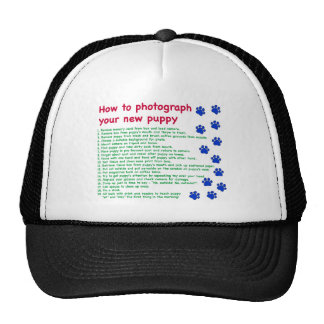 How to photograph your new puppy cap