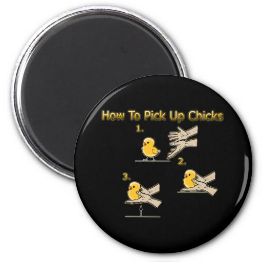 How To Pick Up Chicks Funny Directions Refrigerator Magnet