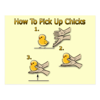 How To Pick Up Chicks Funny Directions Postcards