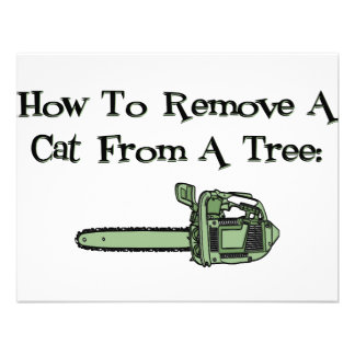How to Remove a Cat from a Tree Invites