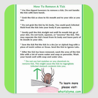 How to Remove a Tick Instructions Card for Lyme Square Sticker
