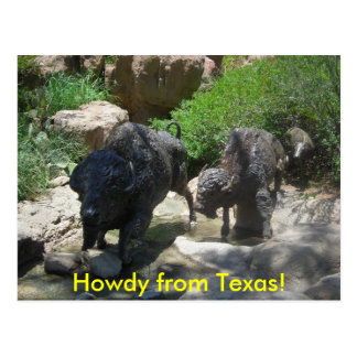 Howdy from Texas! Postcard