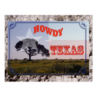 Howdy from Texas Postcard