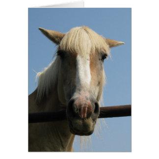 Howdy Partner! Card