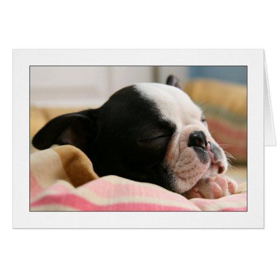Howie Sleeping Card