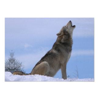 Howling Alaskan Timber Wolf 13 Cm X 18 Cm Invitation Card