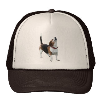 Howling Beagle Dog Hat