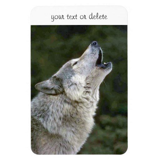 Howling grey wolf beautiful photo portrait custom flexible magnets