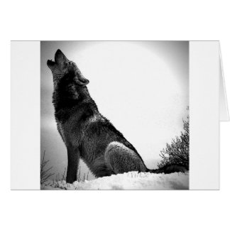 Howling Wolf in Snow Greeting Card