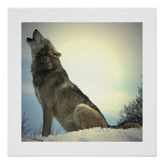 Howling Wolf Poster Print with White Borders