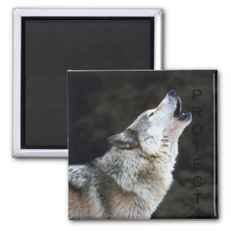 Howling Wolf Square Magnet