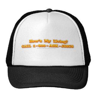 How's My Living Trucker Hats