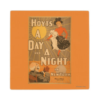 Hoyt's A day and a night in New York City Play Wood Coaster