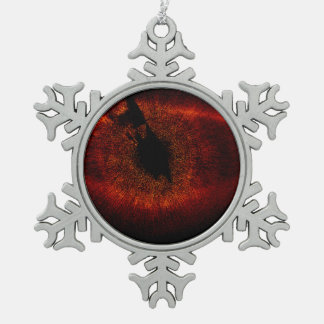HST ACS:HRC Wide View of Fomalhaut System Pewter Snowflake Decoration