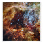 Hubble's Festive View of a Grand Star-Forming Regi Poster