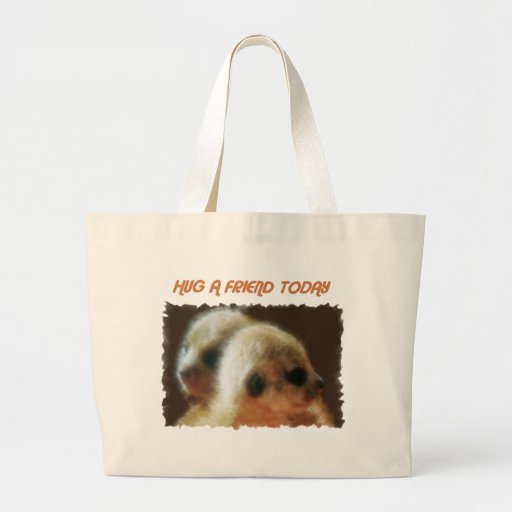 HUG A FRIEND TODAY CANVAS BAGS
