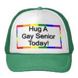 """Hug A Gay Senior"" Cap"
