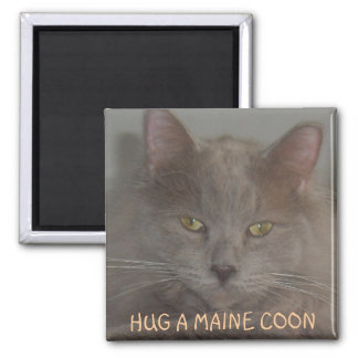 HUG A MAINE COON REFRIGERATOR MAGNETS