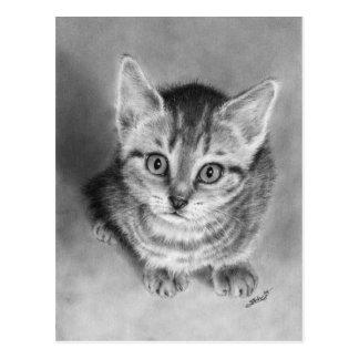 Hug me pleasem Kitten Postcard