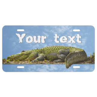 Huge Gator Panoramic Photo - Text Template License Plate