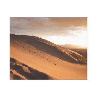 Huge Sand dune Canvas Print