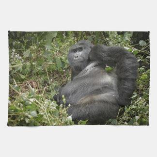 huge silverback mountain gorilla tea towel