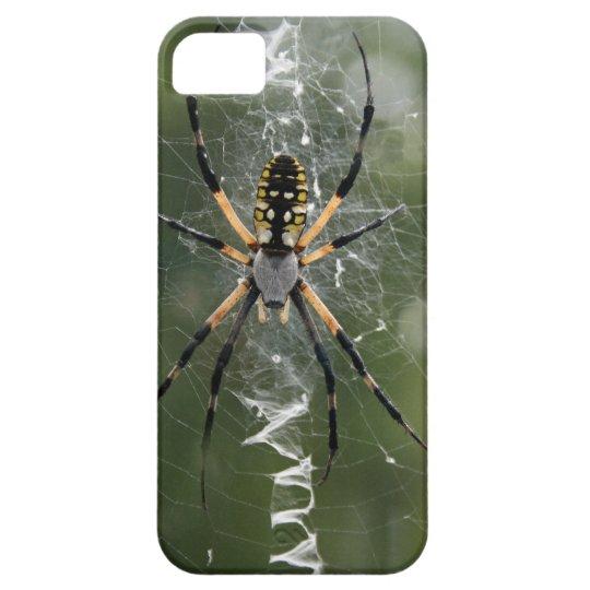 Huge Spider / Yellow & Black Argiope iPhone