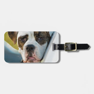 Huge Spotted Dog Looking Out Car Window Bag Tags