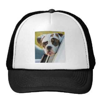 Huge Spotted Dog Looking Out Car Window Mesh Hats