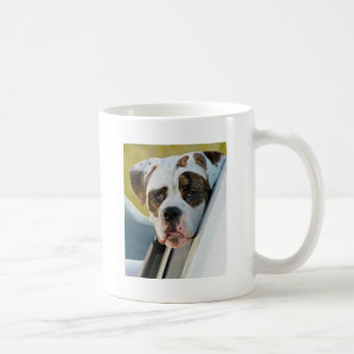 Huge Spotted Dog Looking Out Car Window Mugs