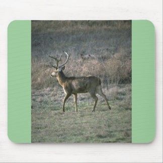 Huge stag mousepads