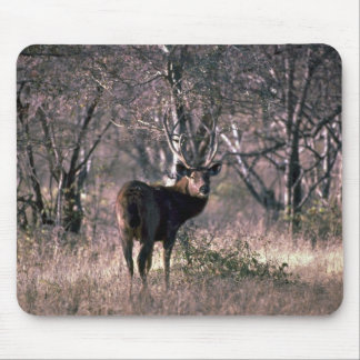 Huge stag mouse pad