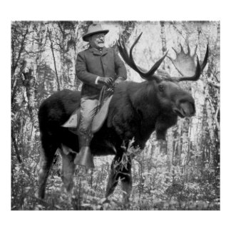 Huge Teddy Roosevelt Riding A Bull Moose Poster