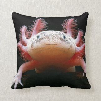 Huggable Axolotl BEAUTIFUL Pillow!! Cushion