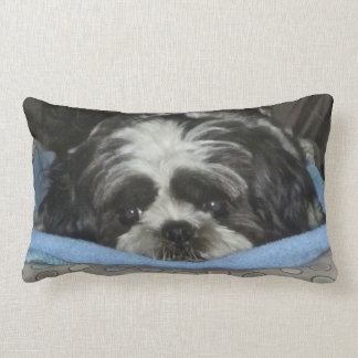 Huggable Shih Tzu Puppy Pillow