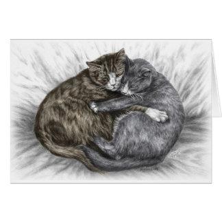 Hugging Cats Sleeping Greeting Card