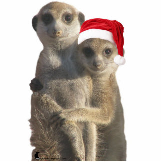 Hugging meerkats Ornament Photo Sculpture Decoration