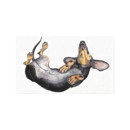 Hugo the dachshund sleeping canvas wall art