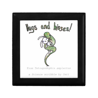 Hugs and Hisses from a four legged snake Small Square Gift Box
