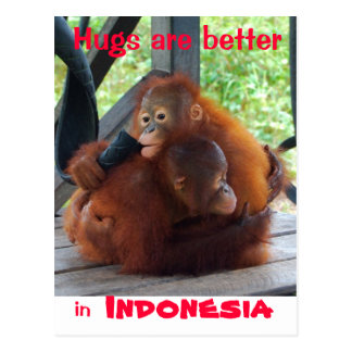 Hugs are Better in Indonesia Postcard