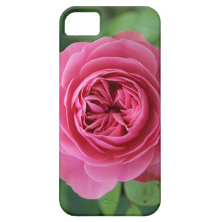 Hull iPhone SE + iPhone Macro 5/5S Pink iPhone 5 Covers