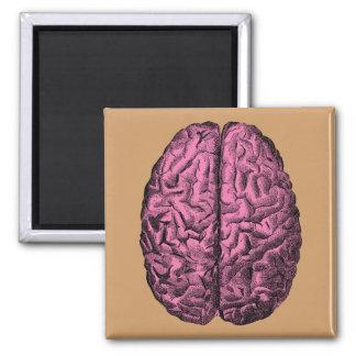 Human Anatomy Brain Square Magnet