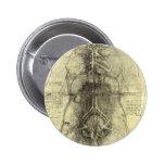 Human Anatomy, Female Torso by Leonardo da Vinci 6 Cm Round Badge