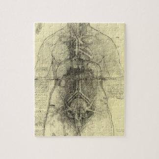 Human Anatomy, Female Torso by Leonardo da Vinci Jigsaw Puzzle
