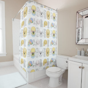 Human Anatomy Skull Color Illustrated Shower Curtain
