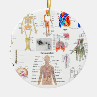 Human Anatomy Medical Diagrams full colored Christmas Ornament