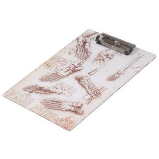 Human Anatomy Skeleton Foot Bones by da Vinci Clipboard