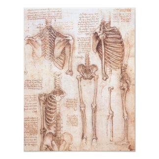 Human Anatomy Skeletons by Leondardo da Vinci 11 Cm X 14 Cm Invitation Card