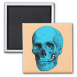 Human Anatomy Skull Square Magnet